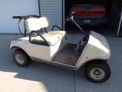 2003 Club Car DS-Before (Zebra)
