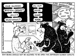 Bears and Donuts