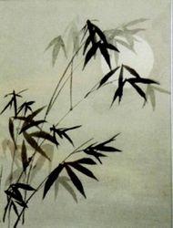 Bamboo Under Moonlight  A