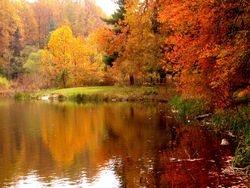 Pine Lake Fall