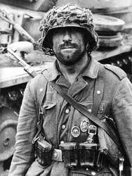 Heer Panzergrenadier:
