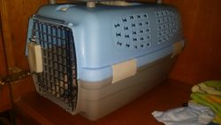 x small puppy crate