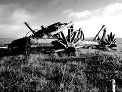 Cart. Ancient.