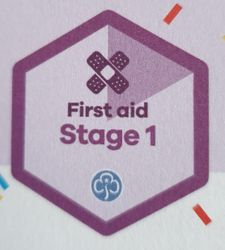 First Aid Stage 1 Skill Builder
