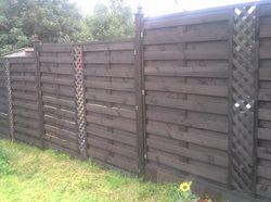 Fence Panels (8' x 6')