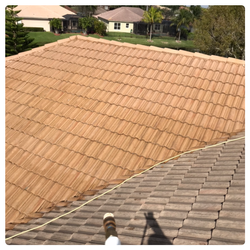 Roof Soft Cleaning