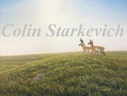 """Magic in the Grassland Sun (24 by 30"""" oil on canvas)"""
