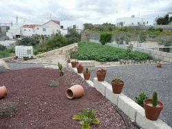 Teil des Gartens