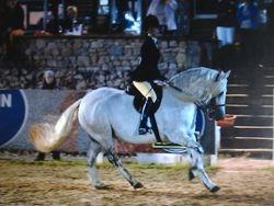 Gwenbeth 2012 Championship