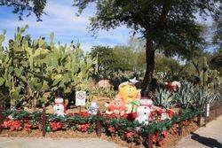 Cactus Garden at Ethel M Chocolates
