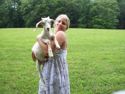 Lindsay's Goat