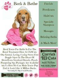 Bark & Bath 2015
