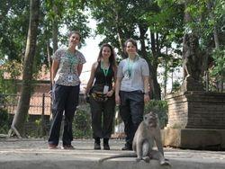 Three students (Camilla Cenni, Sydney Chertoff, and Chloë Wright) and a monkey (Ubud Monkey Forest, Bali, May 2018)