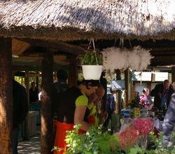 Greyton Saturday morning market