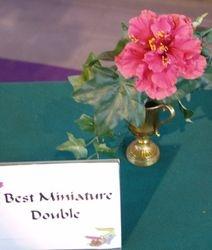 BEST MINIATURE DOUBLE - PRIDE OF HANKINS - Sam & Lynn Andrews, Fairhope, AL.