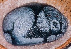 Poodle Dog Rock