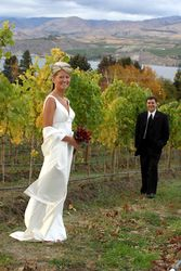 Artsy vineyard picture