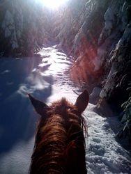 Gorgeous winter ride 2010-2011