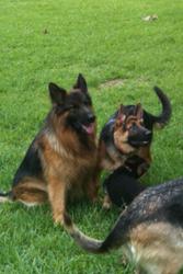 Sadie and Lukas