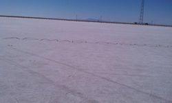 Salt Flat Love