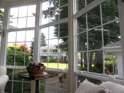 View from Main House Living Room window