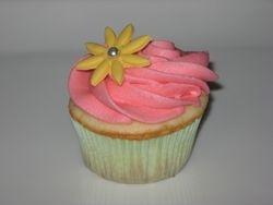 Basic Cupcake Design