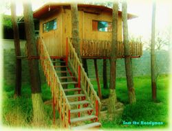 Maggie's Tree House!