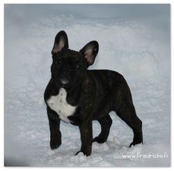 Ilona 6 months