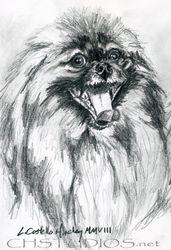 Precious Pet Portrait Commission