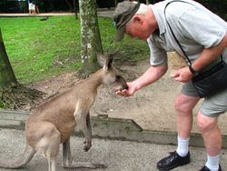Australia with a kangaroo
