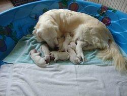 Good Mama!