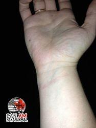 MJ wrist scratch at the Irish Mist Troy NY