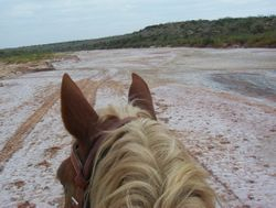 Salt Fork of the Brazos River (...a very dry river)