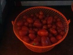 2013 Tomatios