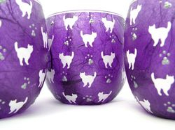 Purple and White Mussy cats