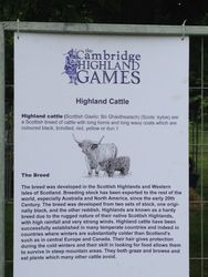 Cambridge Highland Games 2014