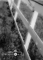 Praire Fence