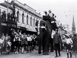 Elephant on Colombo Street 1930's