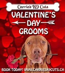 February Valentine Flyer