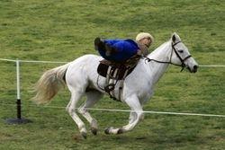 Cossack Rider 2