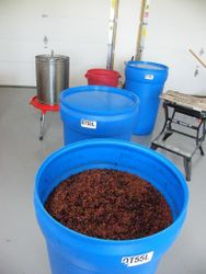 Sand cherry wine, before stirring.