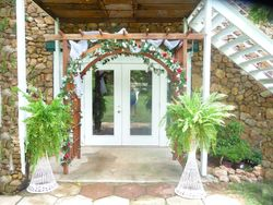 Mike and Nena's arbor and ferns