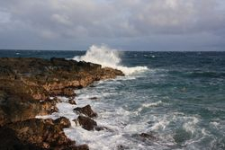 The Point at Poipu Resort - Surf