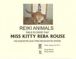 Miss Kitty the Reiki Cat
