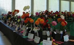 WCDS 08 Head Table2