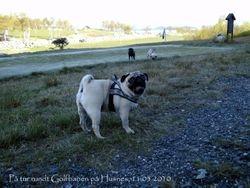 "Marie on ""Golfbanen"" 11.05.2010"