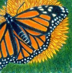 Monarch Mystery, Tempera, 4x4, Original Sold
