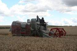 Class Combine Harvester