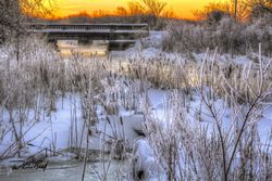 Winter Dawn on the River 2