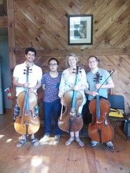 Vivaldi group